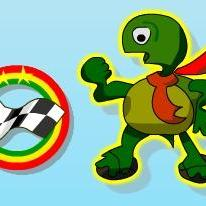 Rolling Turtle
