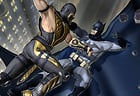 Bat Hero Immortal Legend Crime Fighter