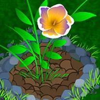 The Gardener Girl
